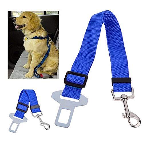 Valink, 1 x verstellbares Haustierhalsband, Sicherheitsgurt für Hunde und Katzen aus Nylon, Haustier-Zubehör