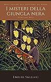 I misteri delle soffitte (Illustrato) (Italian Edition)