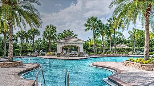 Palmboom Geplant In De Buurt Van Zwembad Voor Kinderen Volwassen Puzzels Cadeau Legpuzzel-1000 Stukjes