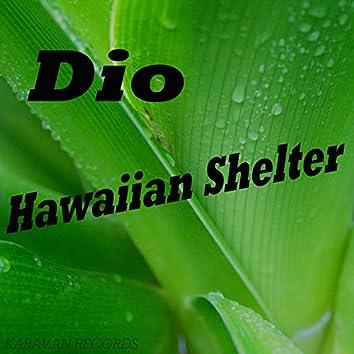 Hawaiian Shelter