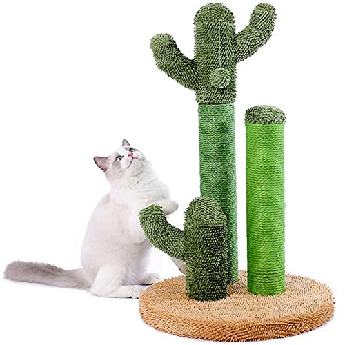 D@Qyb Cat Klettergerüst, Vertikal Katze Springen Katze Katze Scratch Board Katze Lernspielzeug, Mode Kaktus-Form-Entwurf, Anti-Rutsch geeignet für alle Katzen