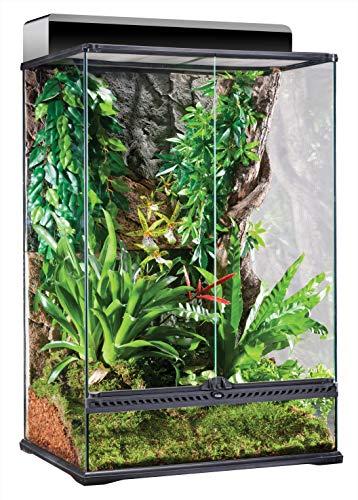 Exo Terra Terrarium aus Glas, mit einzigartiger Front Belüftung, 60 x 45 x 90cm, auch als Paludarium nutzbar