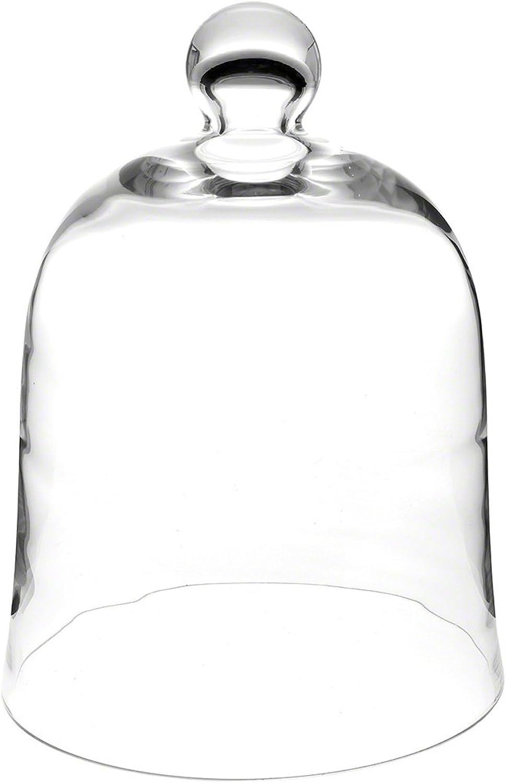 Plymor Brand 10  x 13  Bell Jar Glass Display Dome Cloche (Interior size 9.5  x 10.5 )