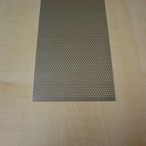 Terra Exotica Lochblech 100 x 10 cm - Inhalt 0,1 qm/Grundpreis 109,00 €/qm