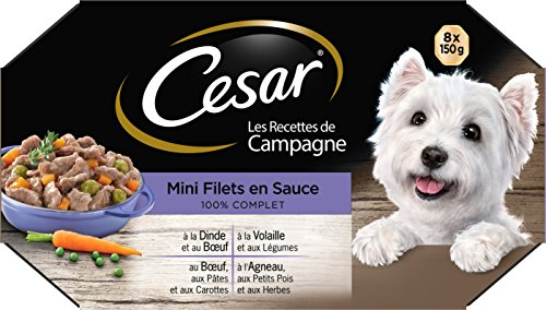 Cesar Les Recettes de Campagne Mini-Netze in Sauce, für Erwachsene Hunde, 4 Geschmacksrichtungen, 3 x 8 Schalen à 150 g