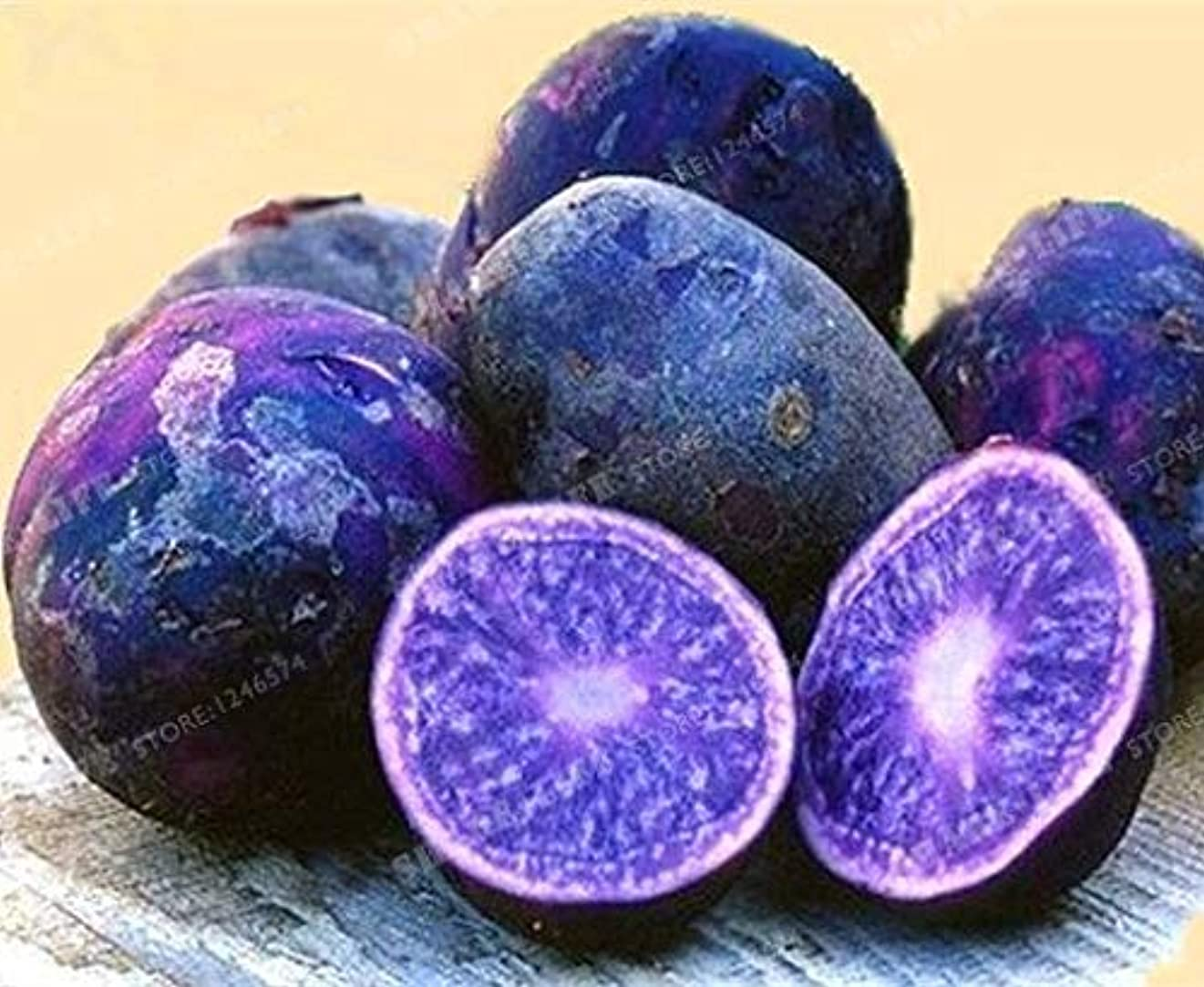 チョップベット地球100pcs ポテト盆栽レア中国高栄養パープルポテト果物や野菜の盆栽のホームジャルダンプランター