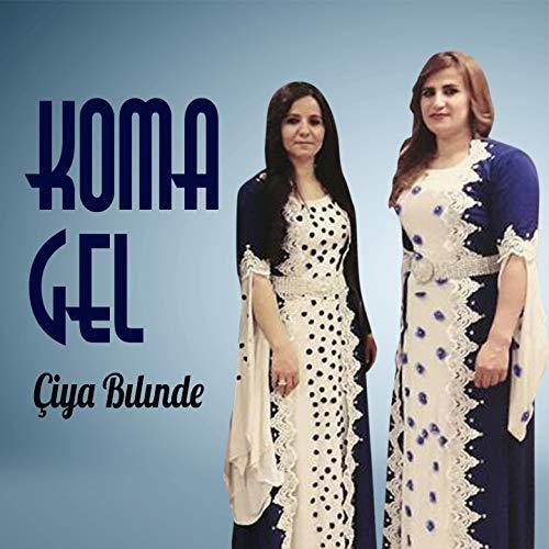 Golı Sıv Sorbu Sere Dare (feat. Hozan Menice)