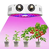 Sunkira Plant Gowing Lamps 1200W Grow Light Indoor Plants Cob Led Full Spectrum Dimmable Levels Plant Grow Lights for Indoor Plants with IR & UV Red Blue Spectrum
