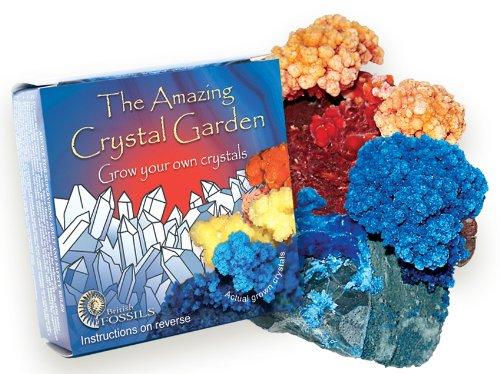 Cultivez votre propre jardin de cristaux – un offert pour un acheté!