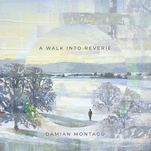 Damian Montagu
