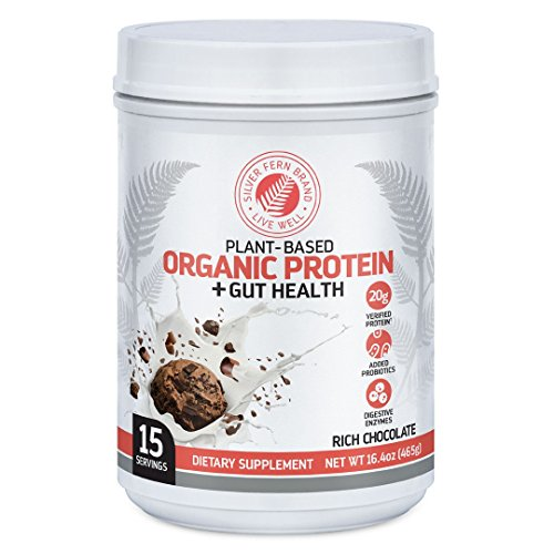 Silver Fern Brand Organic Vegan / Vegetarian Protein Powder Drink Mix - 1 Tub - 15 Servings - Rich Chocolate - Plant Based - Includes Probiotics & Digestive Enzymes - Max Protein Absorption