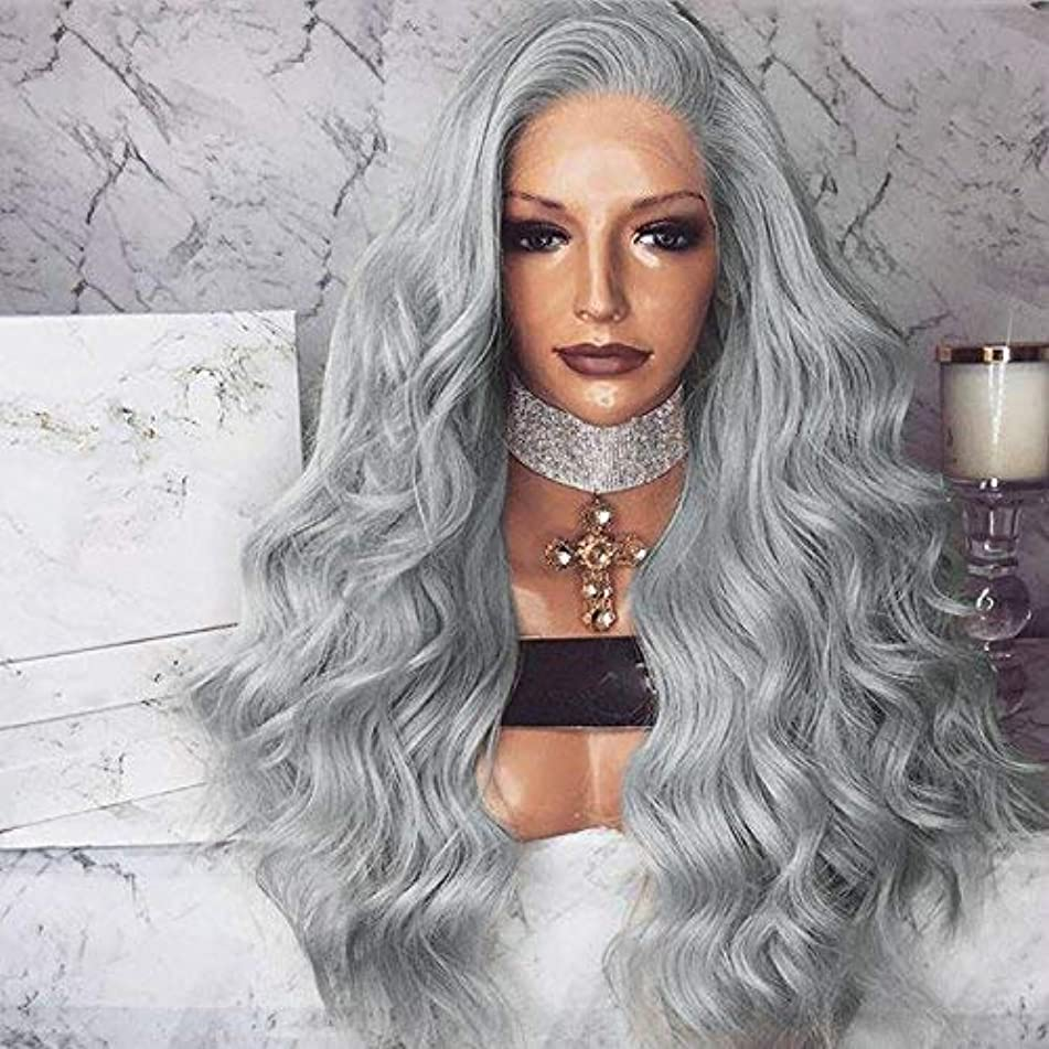 Gray Long Body Wave Lace Front Wigs Silver Grey Synthetic Wigs Half Hand Tied Heat Resistant Wavy Gray Hair Wigs For Women Daily Wear 26 inch by Bernect