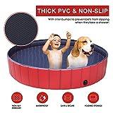 Doggy Pool das Planschbecken für  Hunde (160*30cm) - 3