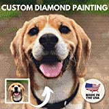 Custom Diamond Painting Kits for Adults 5D DIY - Made in USA - Personalized Diamond Art, Customized Diamond Dotz Kits, Rhinestone Painting , Paint with Diamonds, Square Drill(9.8 INCH / 25 cm)