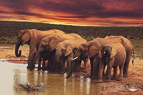 Elefanti Cielo Nuvoloso Coccodrillo Animali acquatici Jigsaw Puzzle per Adulti Da 1000 Pezzi,Puzzle in Legno per il Gioco con la Famiglia Collezione Gioca Gioco Educativo,Arte della Parete,Arredament