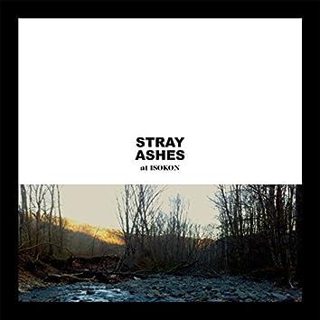 Stray Ashes at Isokon