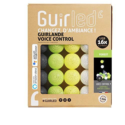 Forest - Guirnalda luminosa con bolas de algodón LED, USB, control de Vocal, Amazon Alexa & Google Assistant (programable, doble USB 2A incluido)