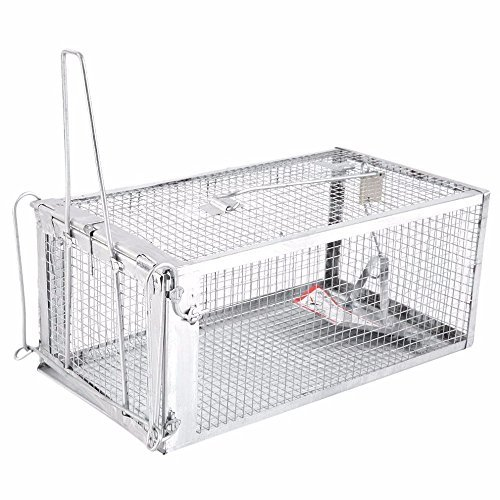 AB Traps Pro-Quality Live Animal Humane Trap Catch and Release Rats Mouse Mice Rodents Squirrels and Similar Sized Pests - Safe and Effective - 12.5' x 6.5' x 5' Single Door