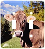 3dRose lsp_82188_2 Italy, Dolomite Alps, Swiss Brown cow EU16 RER0140 Ric Ergenbright Double Toggle Switch