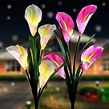 ソーラーフラワーライト 室外太陽ガーデンライト 埋込型花ライト LEDソーラーガーデンライト7色変換オランダカイウユリ ユリ IP65防水 庭パスガーデン装飾ガーデニングギフト イルミネーション 花園、庭、芝生など適用LED景観ライト 紫色と白色(2枚セット)(Calla)