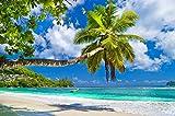 VLIES Fototapete (19V) SEYCHELLES PALM BEACH Größe 350 x 260 cm in 7 BAHNEN 50 cm Breite x 260 cm Höhe - hoch qualitativer fotorealistischer Digitaldruck ! SPEZIALKLEBER für Vliestapete...