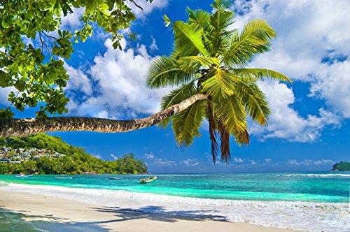 Fototapete (97019) SEYCHELLES PALM BEACH Verschiedene Bild-Tapeten Motive Seychellen Sunset Beach Malediven Sri Lanka Barbados Südsee Karibik Palmenstarnd Sonnenuntergang Maße Wandbild: 350 x 260 cm in 7 BAHNEN 50 cm Breite x 260 cm Höhe Poster Digitaldruck Wall Mural Lieferung Inklusive Tapetenkleister