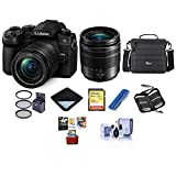 Panasonic Lumix DC-G95 Mirrorless Camera with 12-60mm f/3.5-5.6 Lumix G Power OIS Lens, Black - Bundle with Camera Case, 32GB SDHC U3 Card, 58mm Filter Kit, Cleaning Kit, Mac Software Pack and More