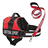 Industrial Puppy Service Dog Vest Harness with Emotional Support Patches and Matching Leash, Emotional Support Animal Vest and Matching Leash Set (Small, Red)