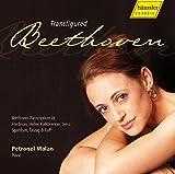 Songtexte von Petronel Malan - Transfigured Beethoven