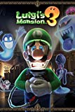 Póster Luigis Mansion You Are In For A Fright, Nintendo (61 x 91,5 cm)
