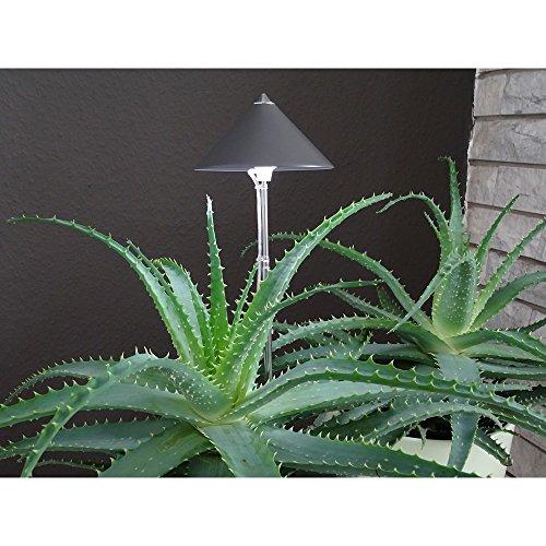 Parus Lights Isun Potled Lamp 10W Grafiet Kleur voor Bloeiende Planten, Multi kleuren, Uniek