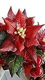 Weihnachtsblume Weihnachtsstern Ton Miniatur Blumen - kaltes Porzellan handgemacht