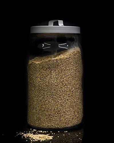 Lino dorado semillas a granel - 100 grs