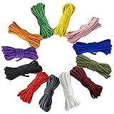 Wenxiaw Cuerda Paracord Set de Cuerdas de Paracaídas para Fabricación de Cuerdas de Supervivencia al Aire Libre, Llavero, Mosquetón, Collar de Perro, Cámping, Alpinismo, 12 Colores, 3 Metros