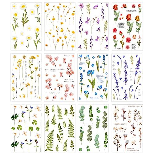 12PCS Flores Prensadas Secas, Flores Secas Naturales, DIY Conjunto de Flores secas,para...