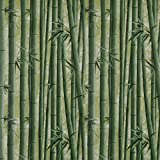 Dundee Deco AZ-F8262 Floral Printed Green Bamboo Shoots Peel and Stick Self Adhesive Remov...