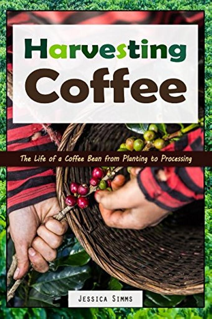 ウィザード衣服コマースHarvesting Coffee: The Life of a Coffee Bean from Planting to Processing (I Know Coffee)