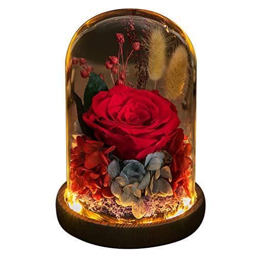Uonlytech Rosa eterna Flor preservada Rosa en cúpula de Vidrio con Luces led con batería día de San valentín decoración de Fiesta de cumpleaños Suministros Regalo sin batería