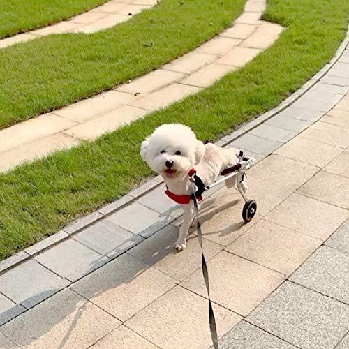 FXPCQC Fahrradanhänger Rollstuhl Hunderollstuhl für Kleiner Hund Katze Kaninchen Hinterbein/Hintere Füße, Hunderollwagen Gehhilfe Hundegehilfe, Wagen für Haustier mit Einem