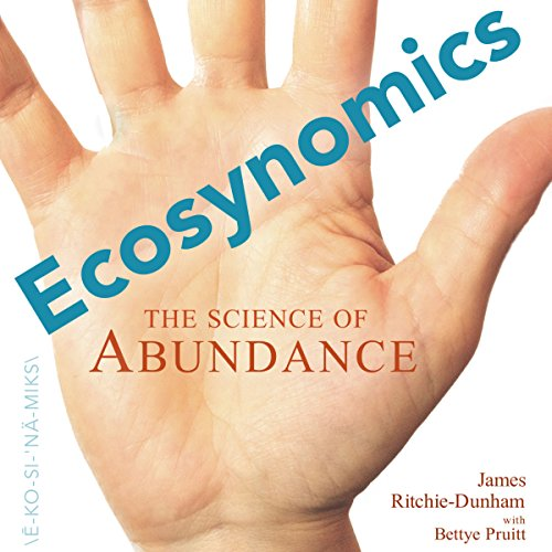 Ecosynomics audiobook cover art