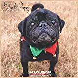 Black Puppy Calendar 2022: Official Black Dogs Breed Calendar 2022, 16 Month Calendar 2022