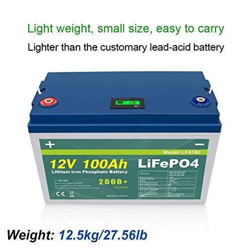 LiFepo BMS - Batería de 12 V y 100 Ah con Bluetooth + pantalla para barco, caravana, acumulo fotovoltaico