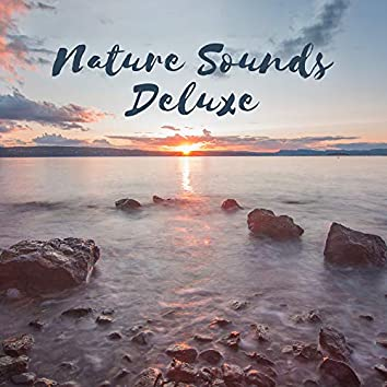 Nature Sounds Deluxe – Nature Music for Yoga, Meditation, Relaxation, Spa
