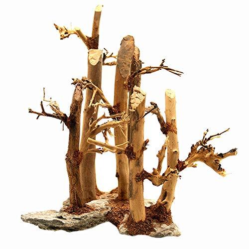 MUJING Decor-Wurzel Wurzel Holz Aquarium Terrarium Deko Moorkienwurzel bepflanzter Garnelenbaum Schiefer Moorkienwurzeln