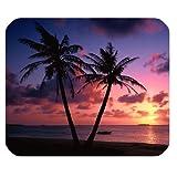 Tropical Hawaii playa palmera sol de verano Rectángulo antideslizante de...