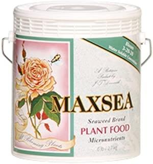 bloom alma max