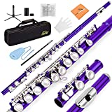Eastar C Flutes Closed Hole C Flute Musical Instrument with Joint Grease,Cleaning Rod, Carrying Case, Stand, Gloves and Tuning Rod, 16 Key Student Flute Beginner Flute, Purple, EFL-1Pu