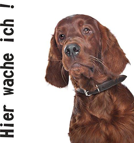wodtke-werbetechnik hondenschild Hier waak ik Irish Setter