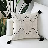 Hand Woven Tassels Throw Pillow Cover - Moroccan Cotton Beige with Black Geometric Pattern Pillow Case Square Decorative Pillowcase 18 Inches (18x18 inches)