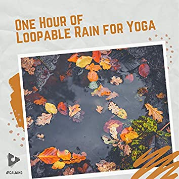 One Hour of Loopable Rain for Yoga